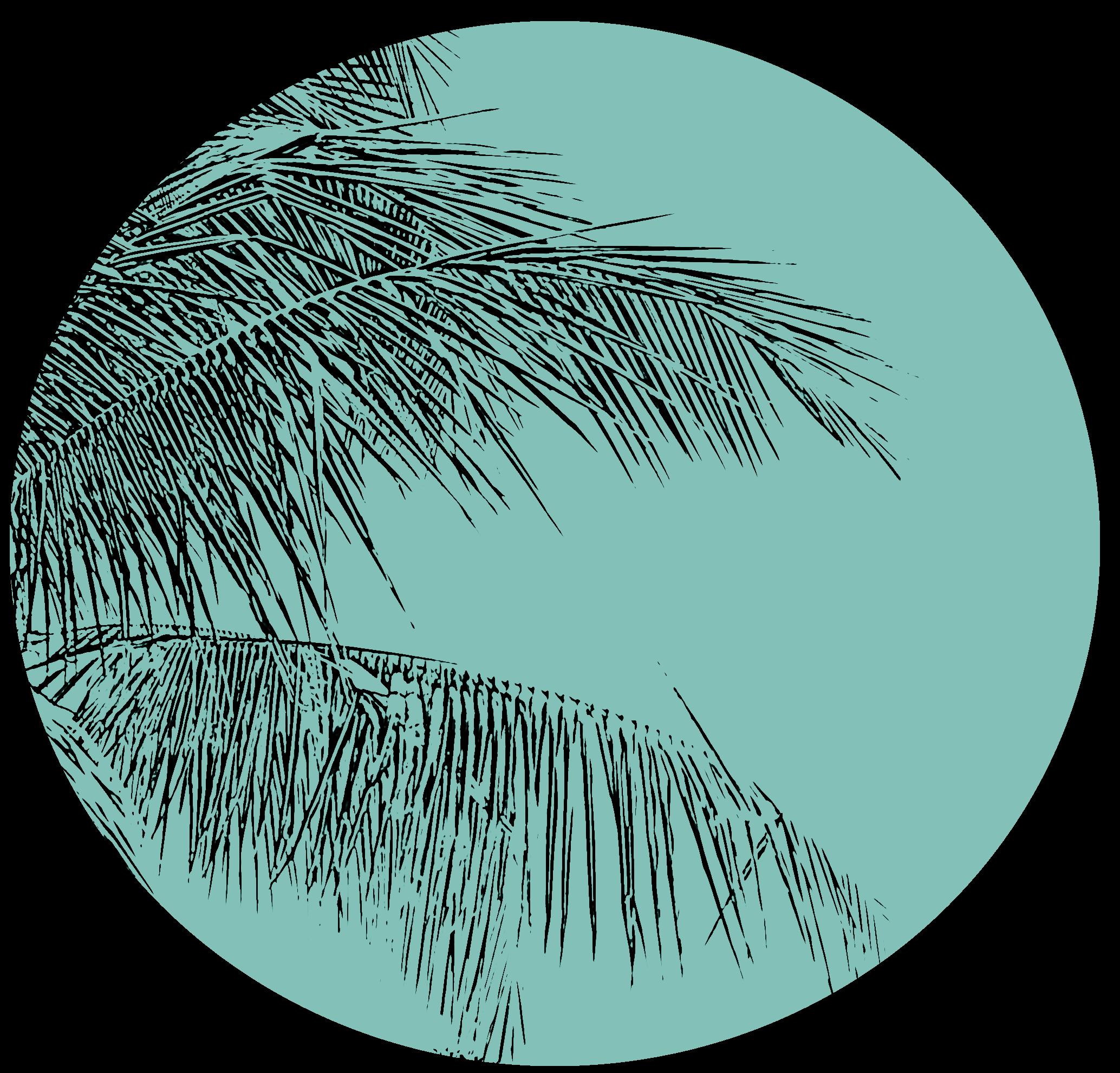 palmgrün